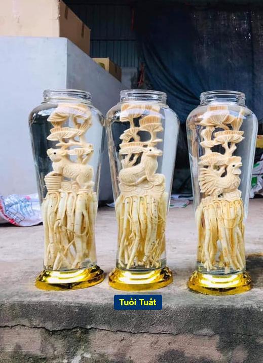 Tuổi Tuất - Đinh lăng điêu khắc 12 con giáp - bình 7 lít