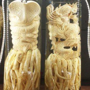 Tuổi Tỵ - Đinh lăng điêu khắc 12 con giáp - bình 19 lít