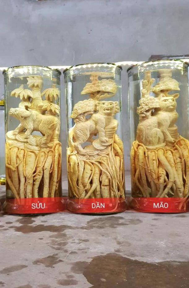 Tuổi Dần - Đinh lăng điêu khắc 12 con giáp - bình 19 lít
