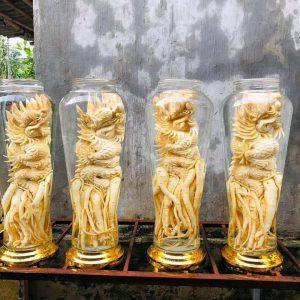 Tuổi Thìn – Đinh lăng điêu khắc 12 con giáp - bình 7 lít