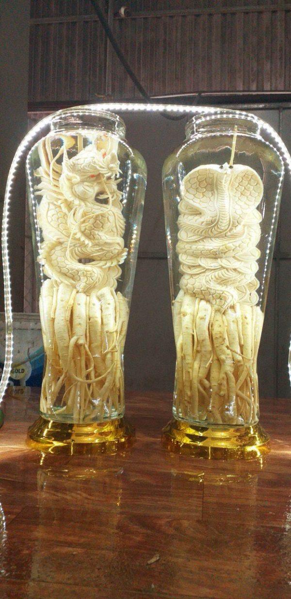 Tuổi Tỵ - Đinh lăng điêu khắc 12 con giáp - bình 7 lít