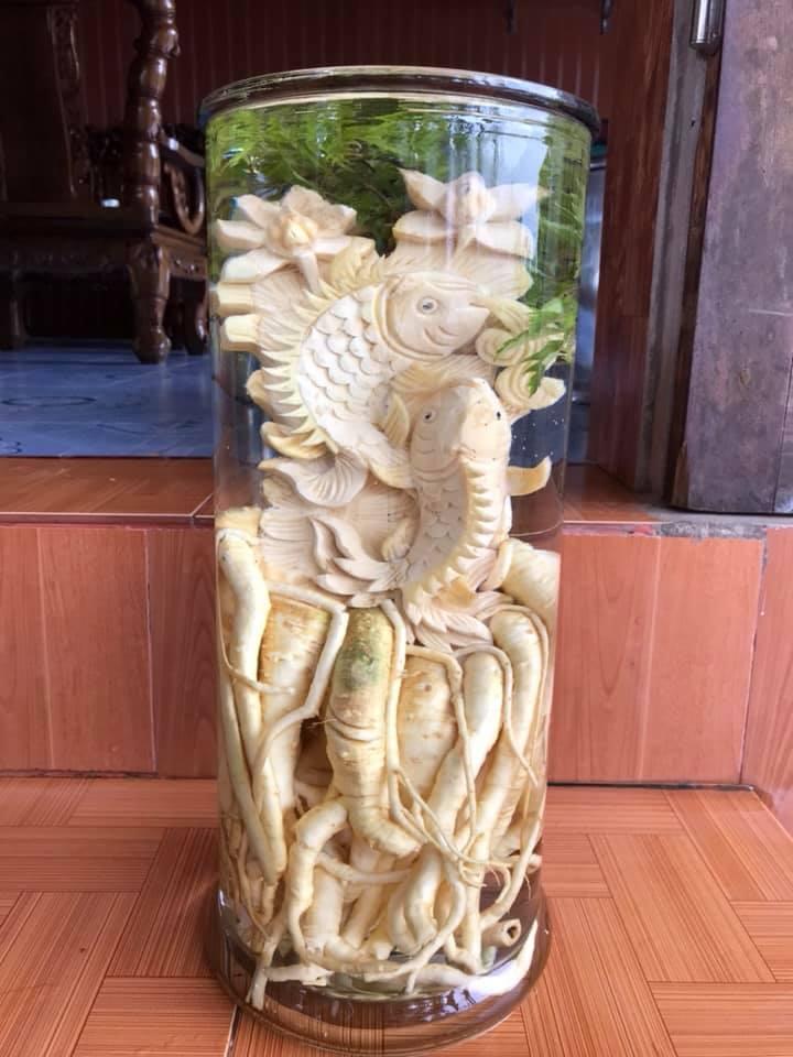 Cá chép - Bình 12 lít - Đinh lăng điêu khắc