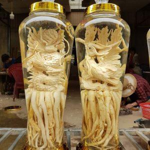 Đinh lăng điêu khắc Long Phụng - Bình 7 lít