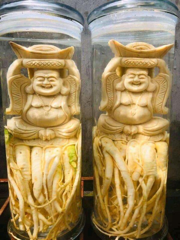 Di lặc đội vàng - Đinh lăng điêu khắc - Bình 12 lít