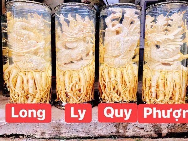 Đinh lăng điêu khắc Tứ Linh - Bình 19 lít