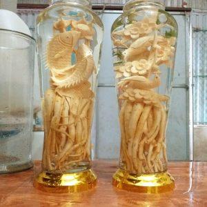 Cá chép - Bình 7 lít - Đinh lăng điêu khắc